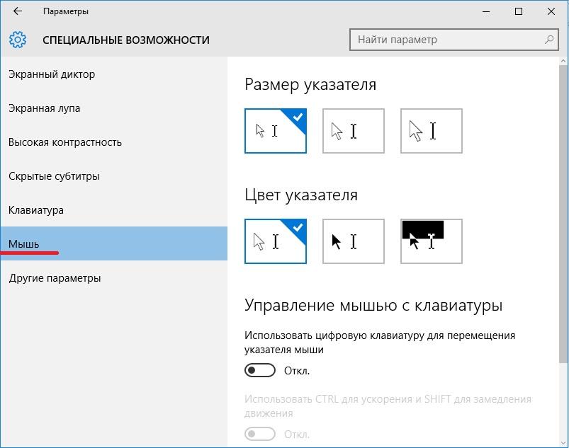 windows 10 специальные возможности